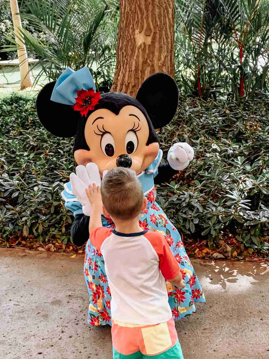 Little boy giving Minnie Mouse a high five at Aulani in Hawaii