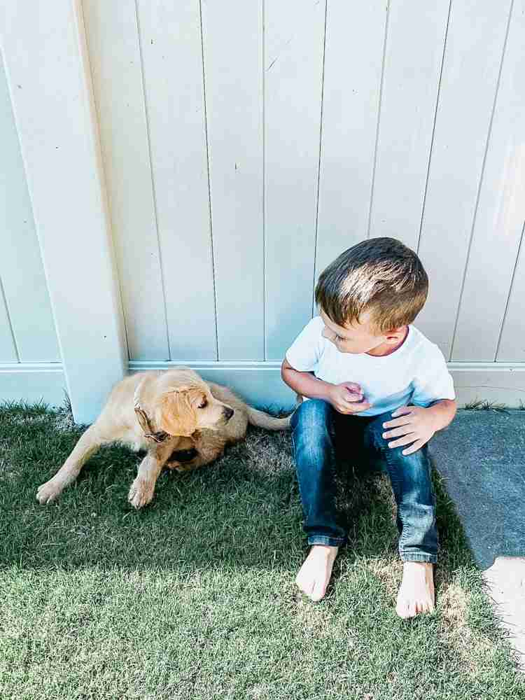 Boy and puppy sitting on the grass