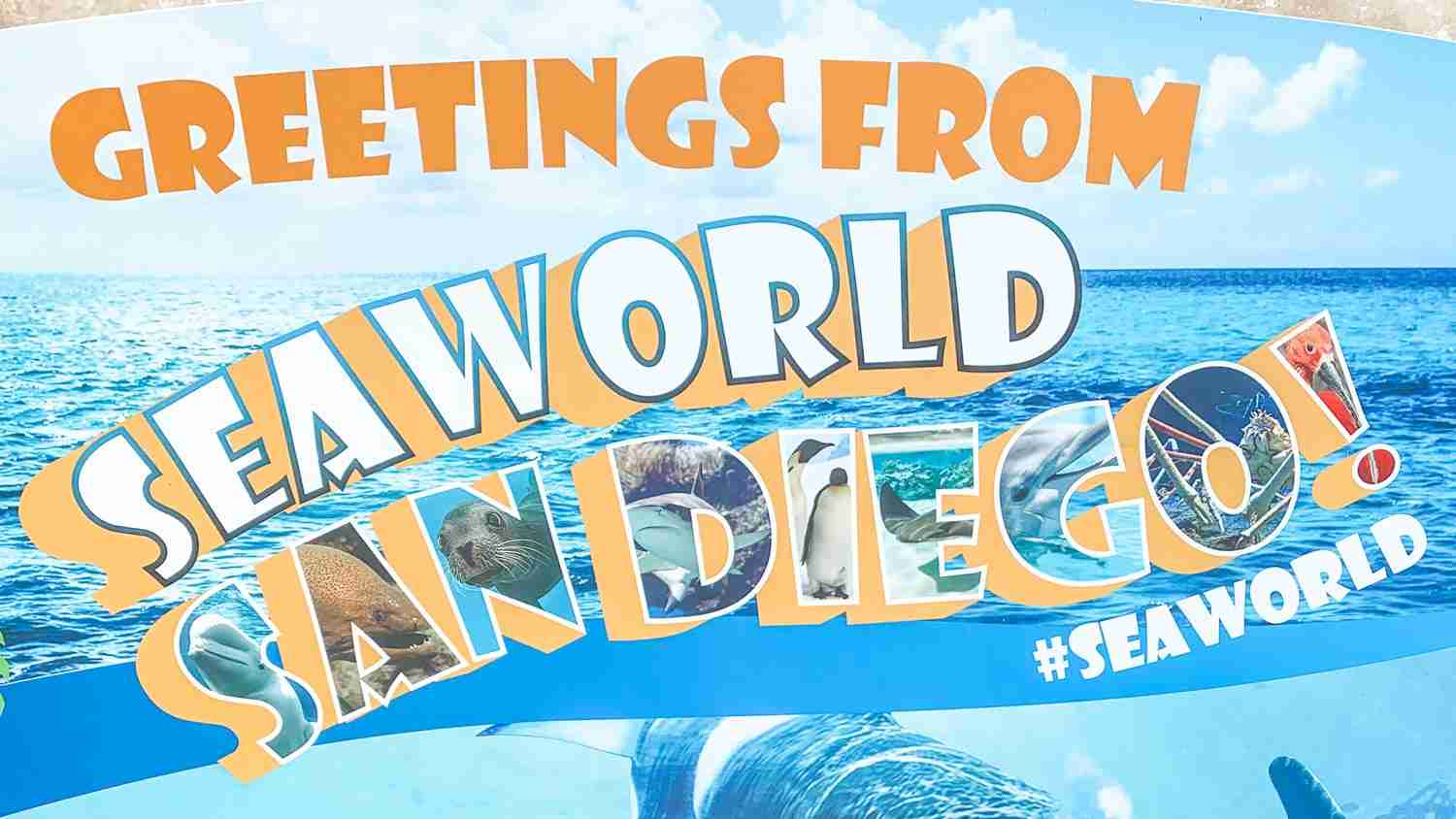 greetings from seaworld sign